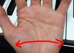 弧は描かず手の平を鍵盤に触れるごとく低空飛行
