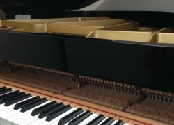 ピアノ 調律